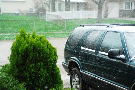 snow-in-spring-ii_04-05_37_edited-1.jpg